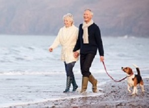 Walkies! The influence of dogs on the sedentary elderly