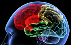 Electric brain stimulation boosts recovery in stroke patients