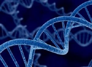 GeneticsFocus