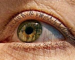 EyeLightReceptor