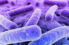 SA's listeriosis outbreak 'the worst in global history'