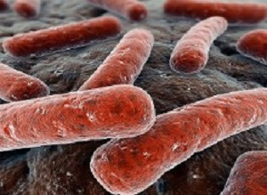 New drug combo successfully treats DR-TB