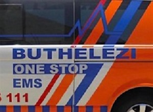 Buthelezi EMS contracts in North West and Free State to be investigated