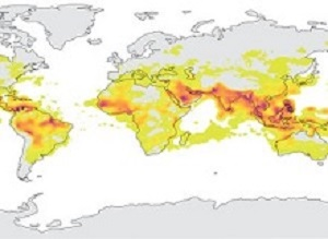 Extreme heat exacerbating global health risks — UN scientific report