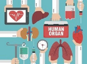 The complex reasons behind SA's organ donor shortage