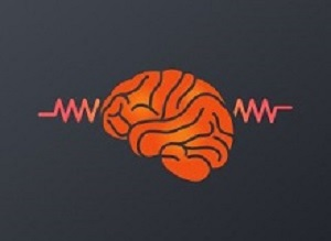 Epilepsy: Seizures not forecastable as expected