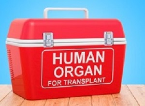 Chinese organ donation statistics may have been falsified