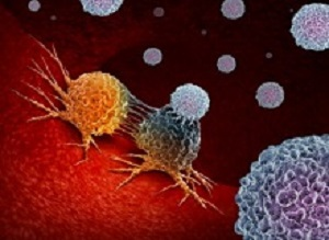 New T-cell therapy has potential to kill most human cancer types – animal study