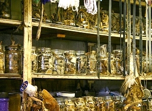 The challenge of trialling Africa's traditional medicines