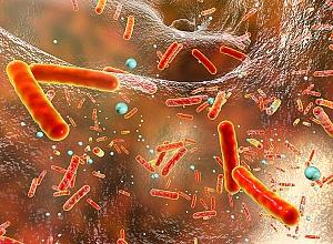 East African medical graduates 'lack antibiotics knowledge' — Research report